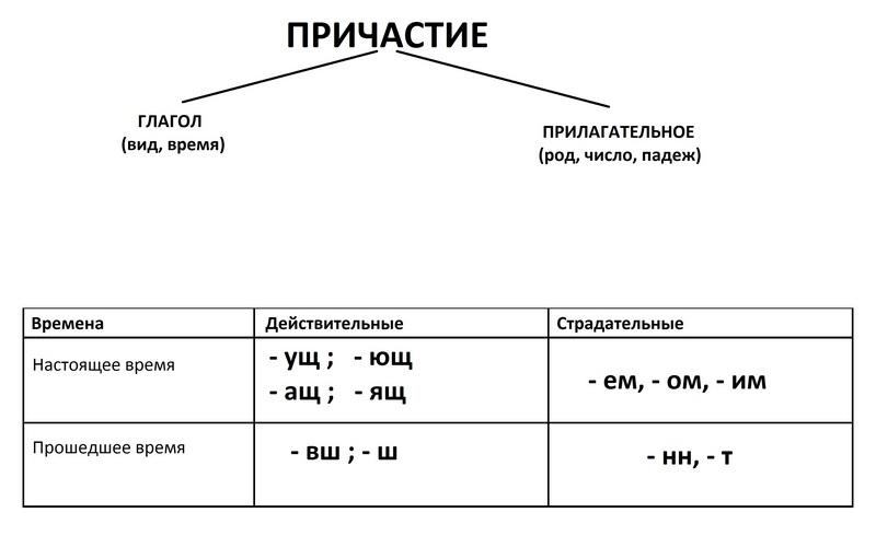 Шпаргалки 7 класс по русскому языку тестирование